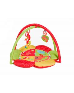 Safari Petal Play Gym